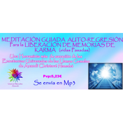 MEDITACIÓN GUIADA DE AUTO REGRESIÓN - MP3