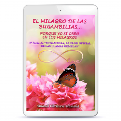 LIBRO DIGITAL - EL MILAGRO DE LAS BUGAMBILIAS, PORQUE YO SÍ CREO EN LOS MILAGROS...