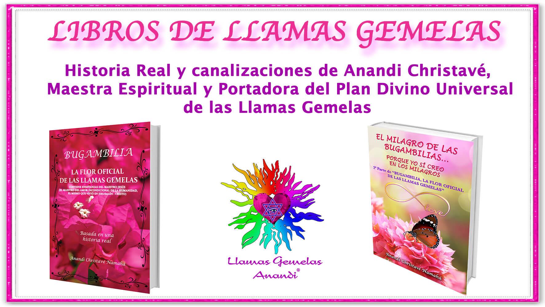 libros Llamas Gemelas
